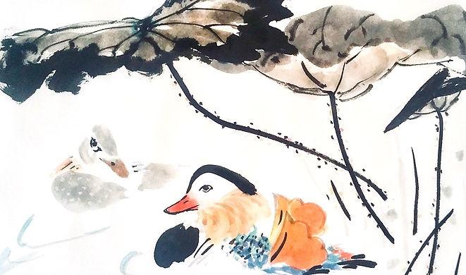 mandarin ducks 3.jpg