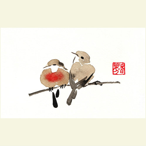 Pair of Robins (set of 5 greeting cards)