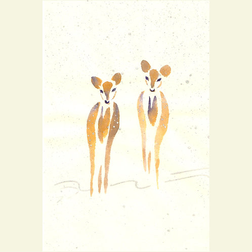 Deers (set of 5 greeting cards)