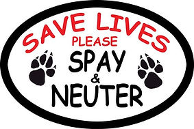 spay and neuter clinic, PAWS of Oroville Clinic,Veterinarian Clinic, Yuba County, Butte County, Sutter County, Dog cat