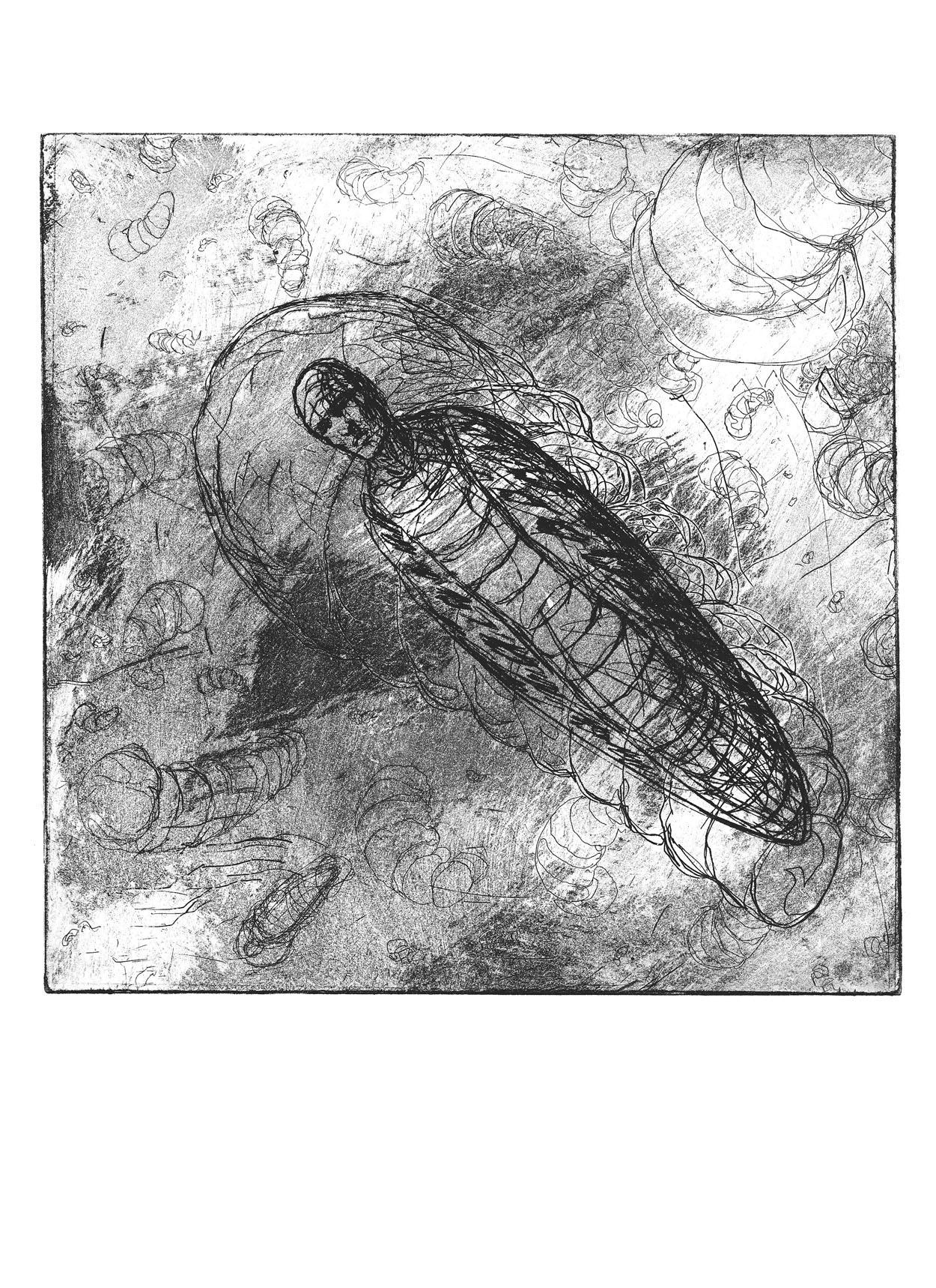 beetle cocoon