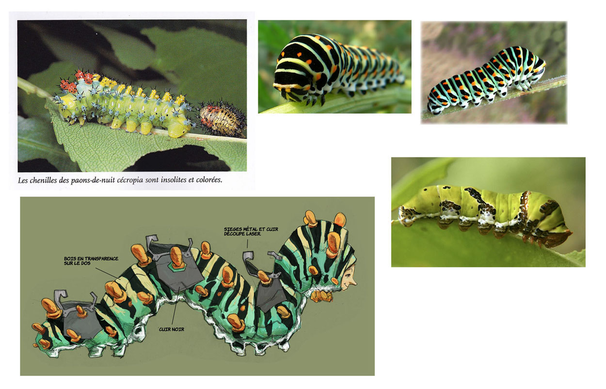 carousel caterpillars