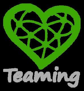 TeamingLogo.png