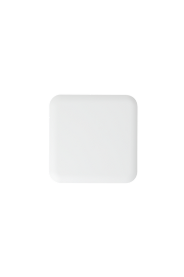 PA1200 Access Point