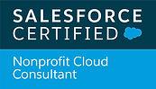 Nonprofit-Cloud-Consultant_RGB.jpg