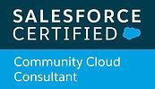 community cloud consultant.jpeg