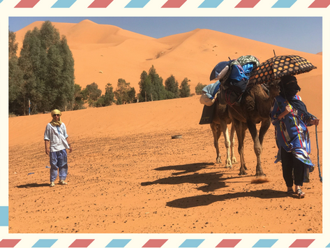 A Very Private Camel Trek - Sahara Dreaming: Part 1  revised edition 2021