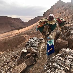 Morocco Highlights