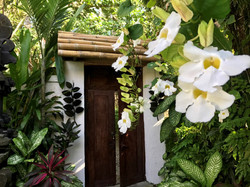 Our gardens are perfumed and private