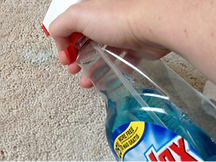 windex-on-carpet-stain.png