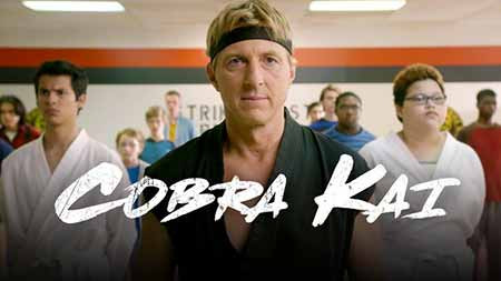 Cobra Kai - Karate Kid strikes back