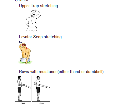Exercises & Stretches