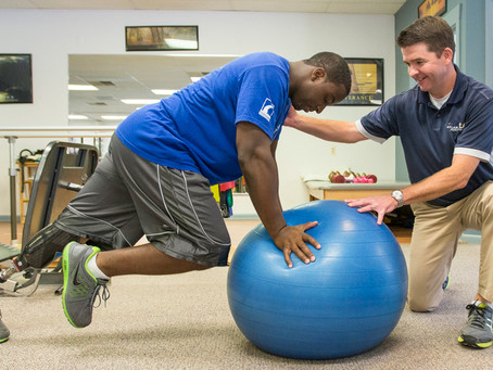 Who and What are Physical Therapists