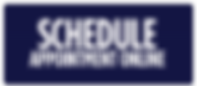 schedule online now.png