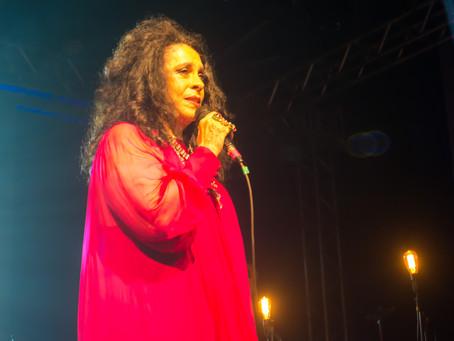 MECA Festival [REVIEW]
