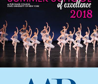 Ballet Vera Bublitz realiza audição para o Summer of Excellence 2018