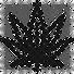 marijuana-200085_edited.png