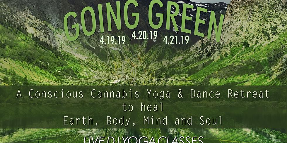 Stoney Yogi Campout: Going Green Yoga Retreat