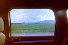On the road, analog view, 2021