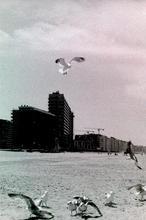 Ostend, 2021, analog