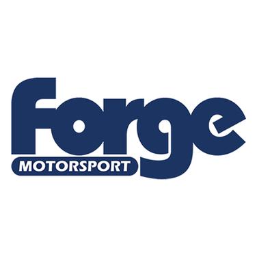 Forge (2021_02_19 19_02_33 UTC).png