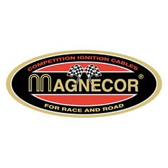 Magnecor (2021_02_19 19_02_33 UTC).png