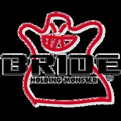 Bride (2021_02_19 19_02_33 UTC).png