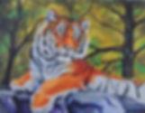 tiger on rocks large file.jpg