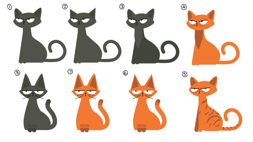 Design options for Cat