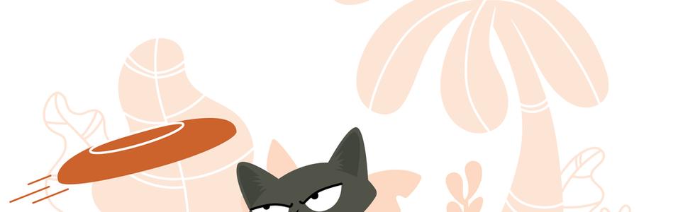 Frisbee Cat