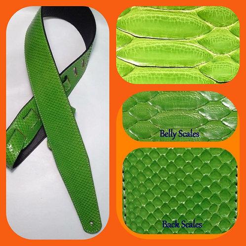 Green Pate Python