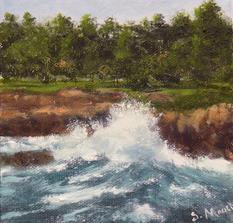 Sea Splash