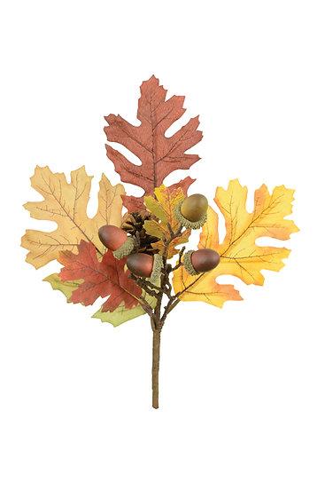 Oak Pick
