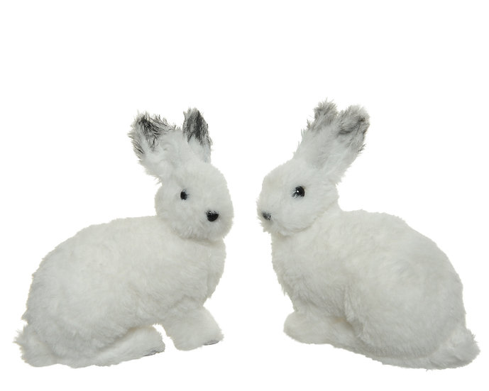 Snow Hare (Small)