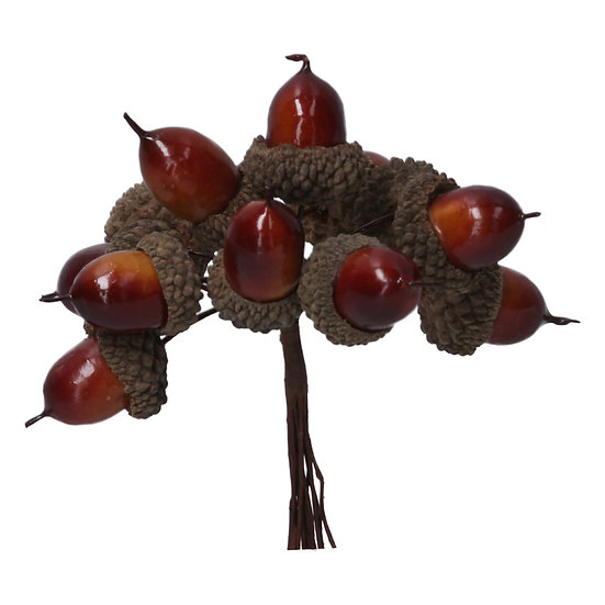 Acorn Bunch
