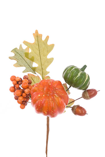 Pumpkin Pick