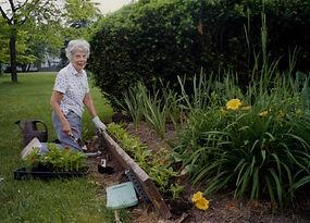 Zonta Locust Garden 2012 Dorothy Webster