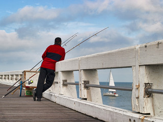 Aprender é pescar