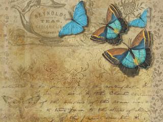 O menino e as borboletas