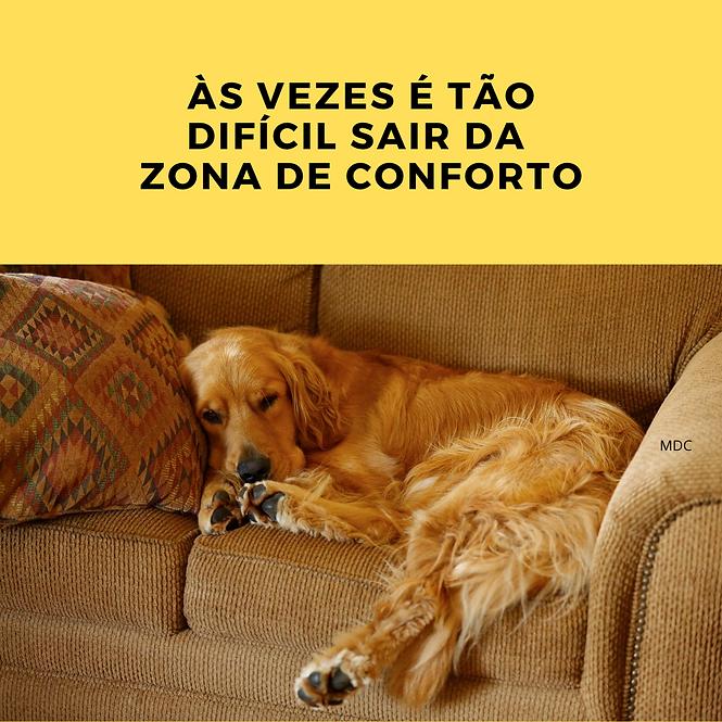 ZONA DE CONFORTO É UM LUGAR É QUENTINHO