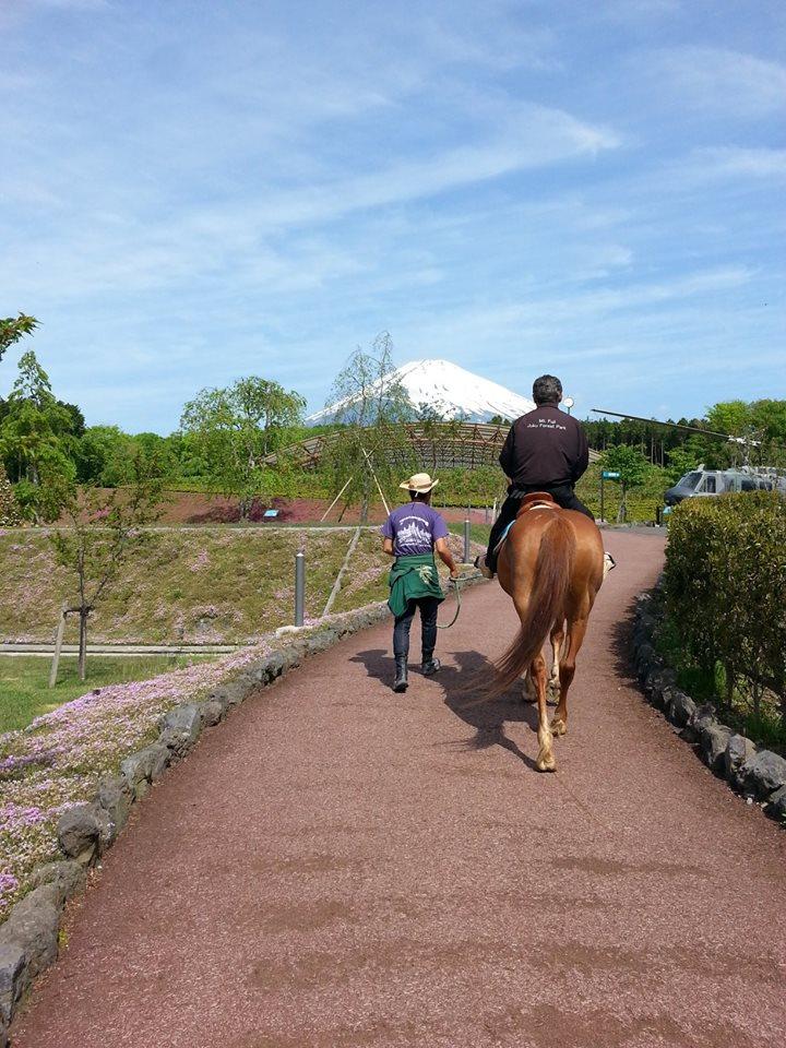 テーマパークで乗馬体験