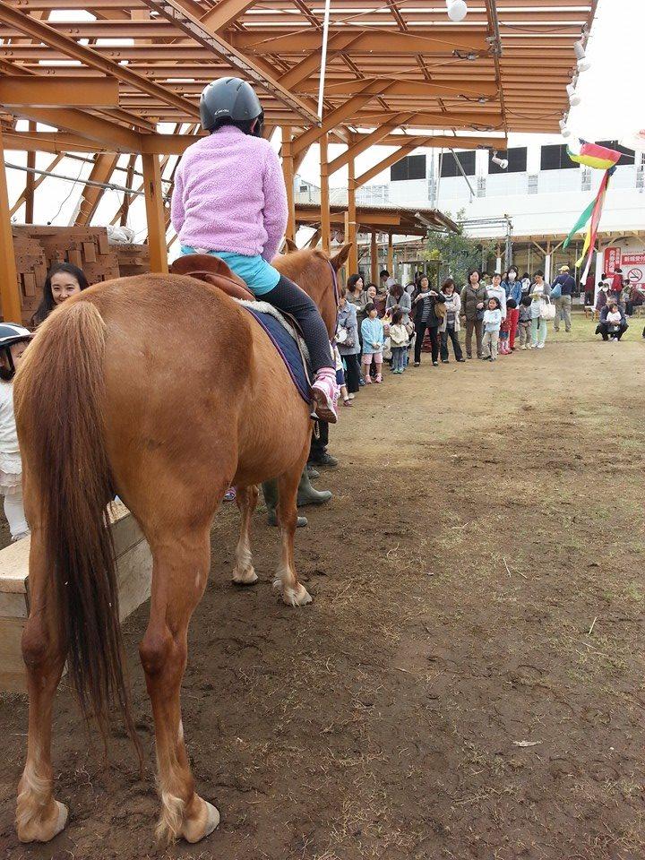 地域の人は馬がやってきて大喜び。