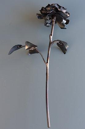 Black Metal Rose