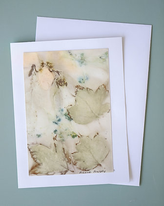 Nature's Watercolours Card Pack