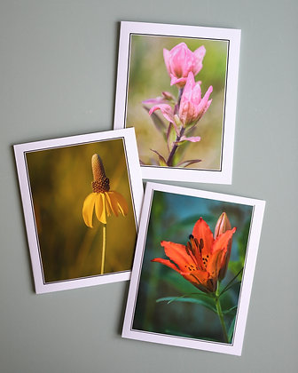 Wildflower Cards (Pack of 3)