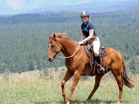 My Horse Life - From the Ground Up