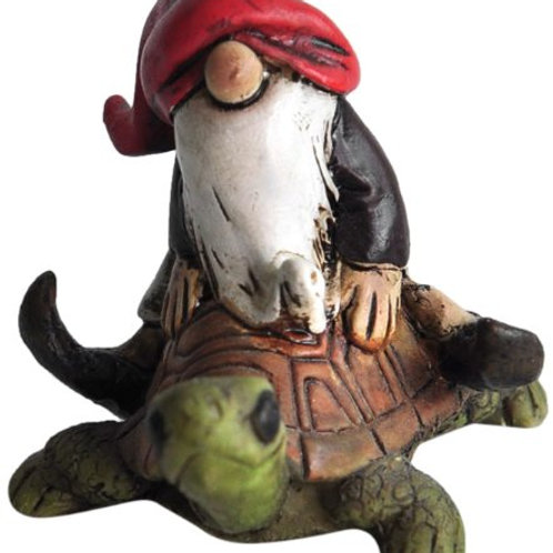 Garden Gnome Riding on Turtle