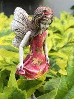 Fairy Macy