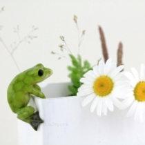Frog Flower Pot Hugger