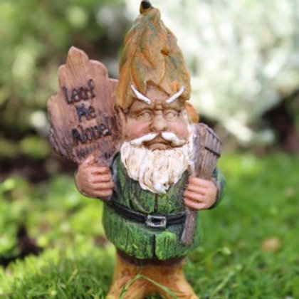 Andy the Gnome